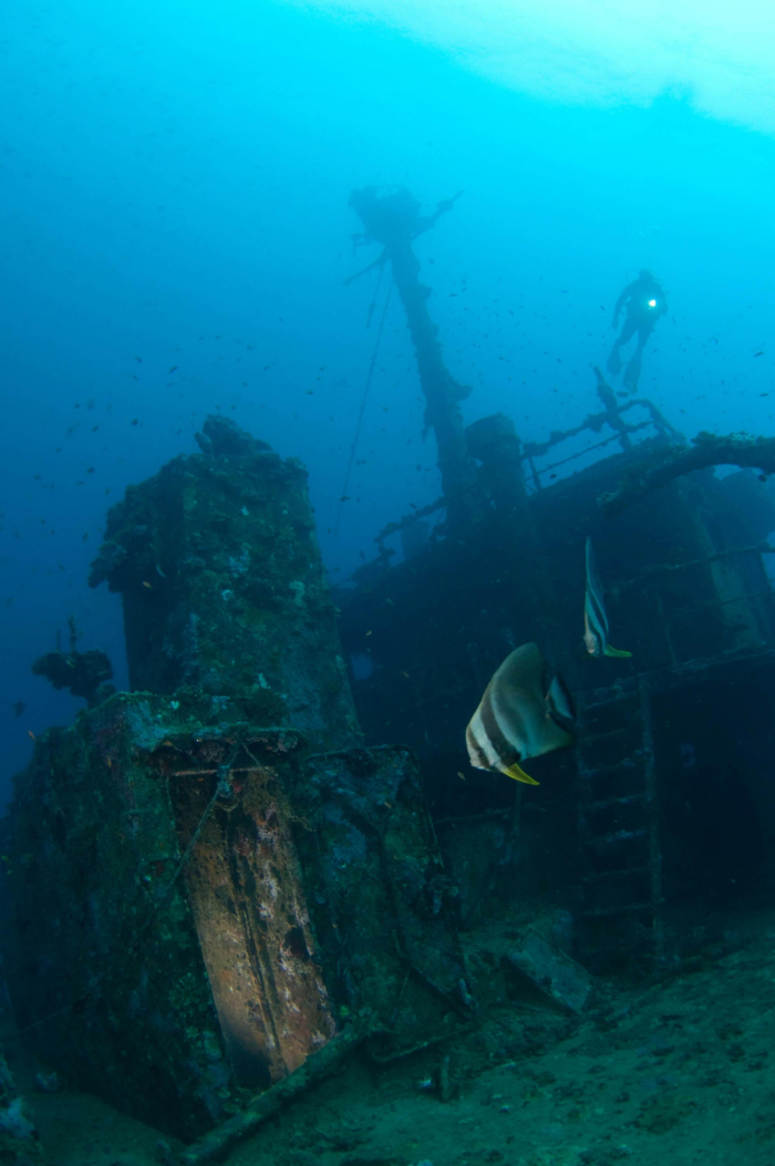 Maldives South Ari Machachafushi Wreck 2