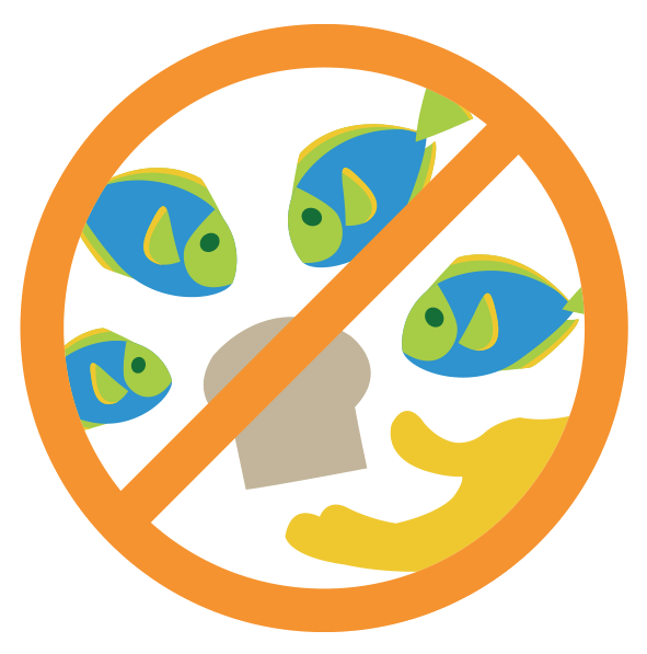No-Feeding-Fish.png#asset:6120