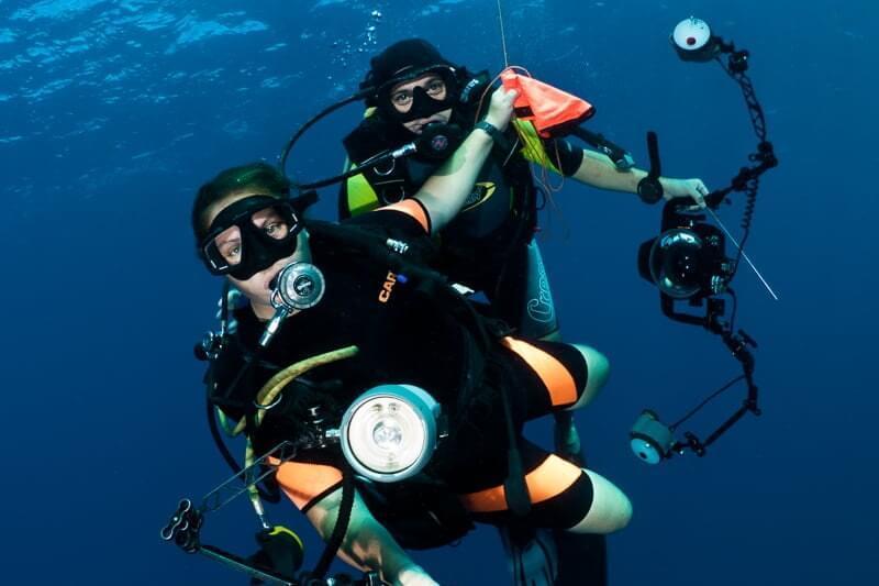 Sulawesi-Scuba-Diving-12.jpg#asset:9403