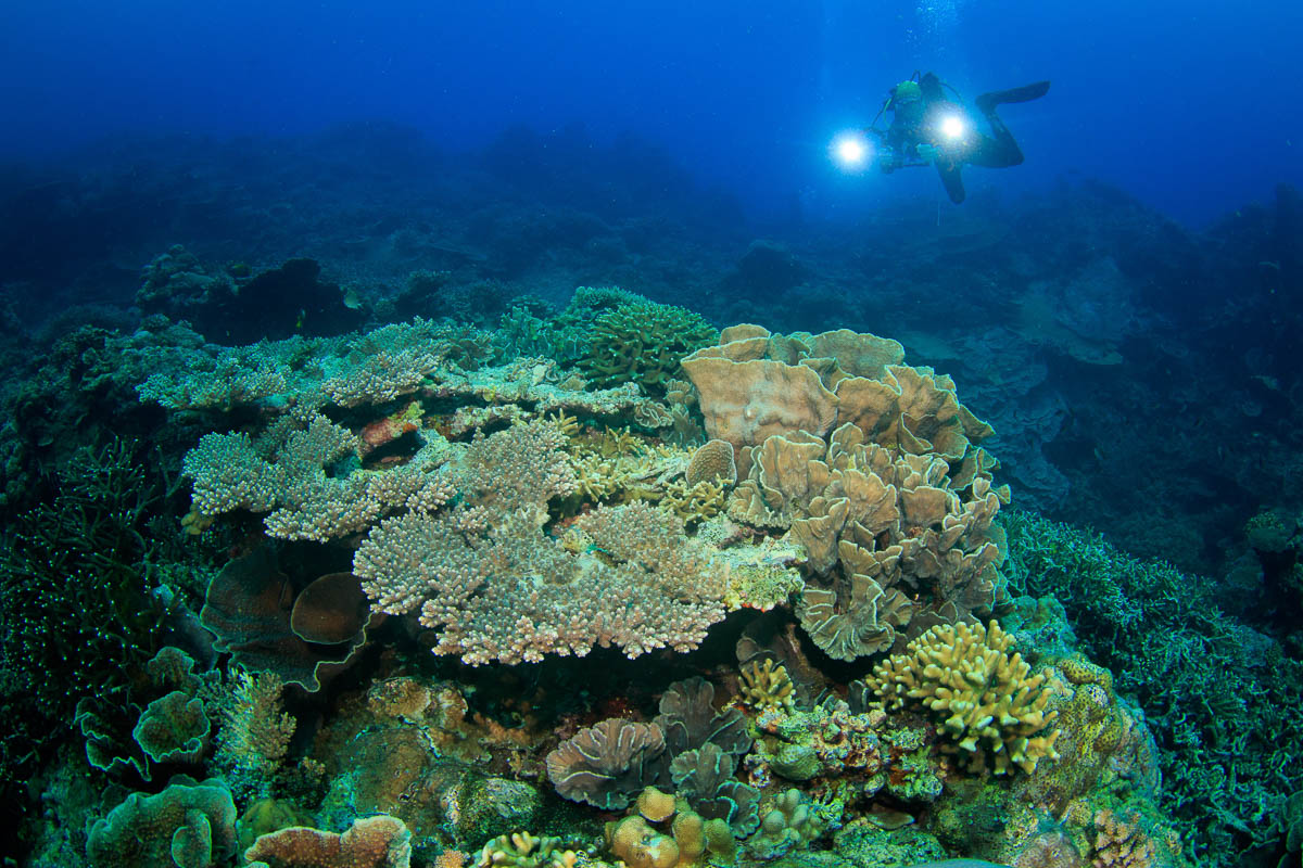 Banda Sea Forgotten Islands Indonesia 2