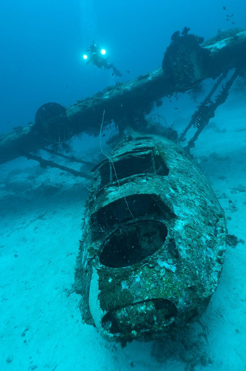 Cenderawasih Bay Papua Indonesia Diving