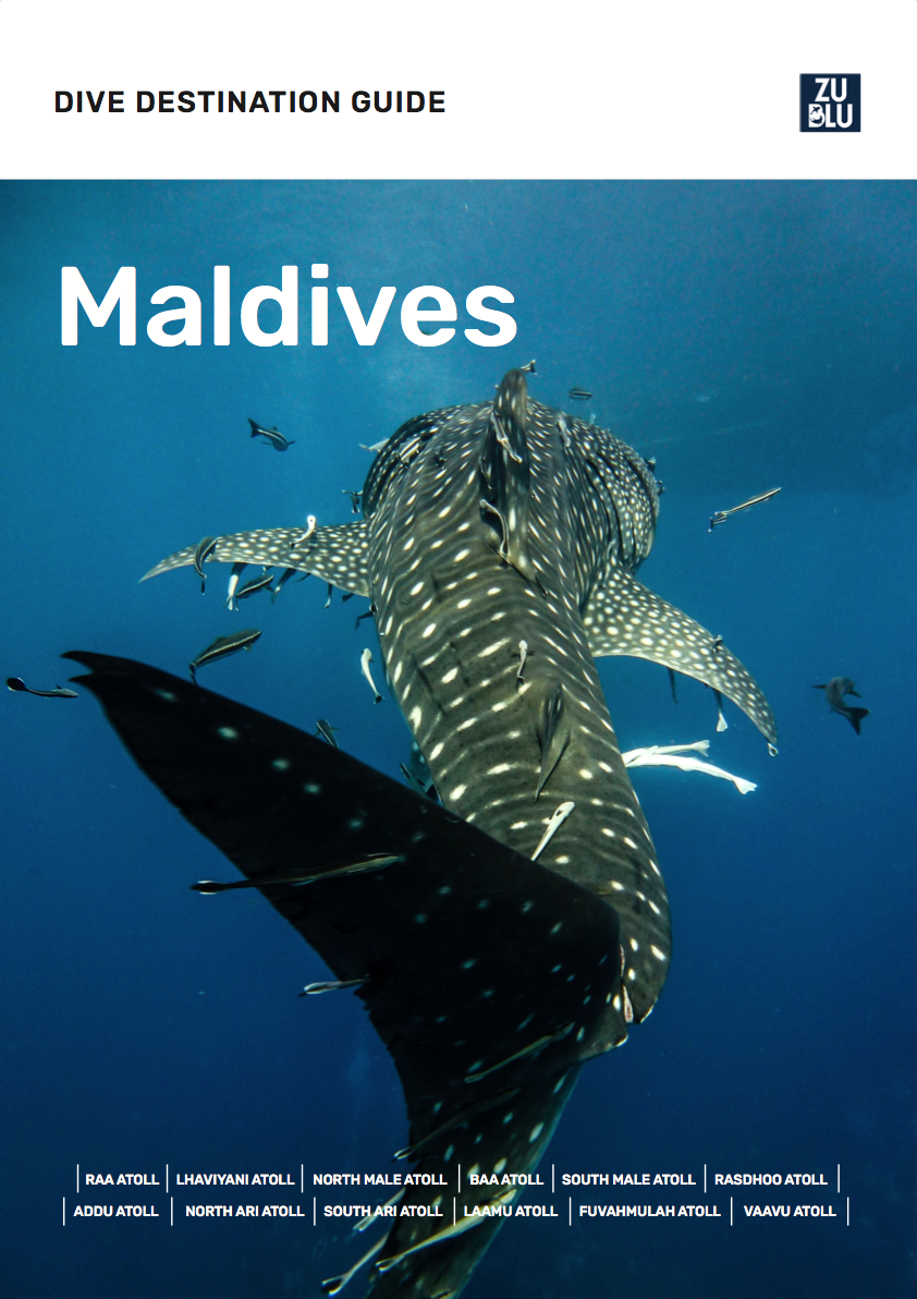 Maldives Dive Destination Guide Cover