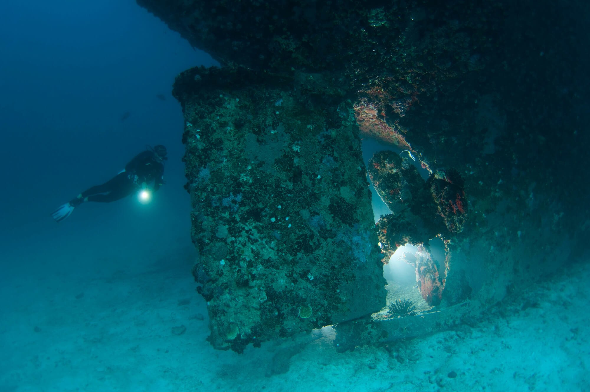 Maldives South Ari Machachafushi Wreck 3